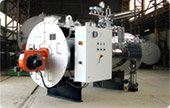 Fire tube steam boilers